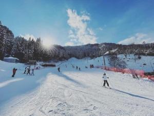 スキー 兵庫 場 県