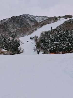 場 ハチ 天気 スキー 北